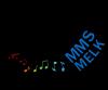 Musik-Mittelschule (Jakob-Prandtauer-Schule) Melk